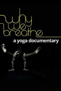 happy yoga why we breathe