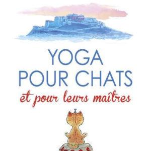 happy yoga pour chat